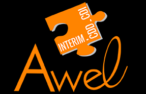 Awel-interim-27613